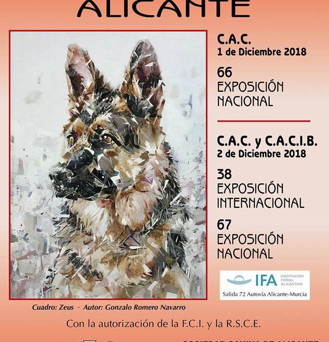 Reparto definitivo de jueces exposiciones nacional e internacional 2018