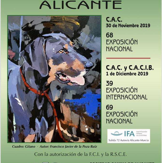 Horarios Exposiciones Alicante 2019