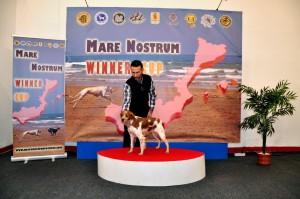 Mare_Nostrum (11)
