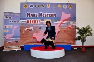 Mare_Nostrum (14)