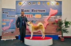 Mare_Nostrum (2)