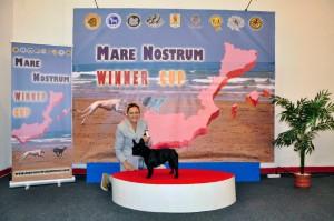 Mare_Nostrum (3)
