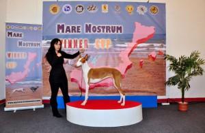 Mare_Nostrum (5)