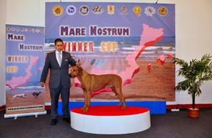 Mare_Nostrum (6)