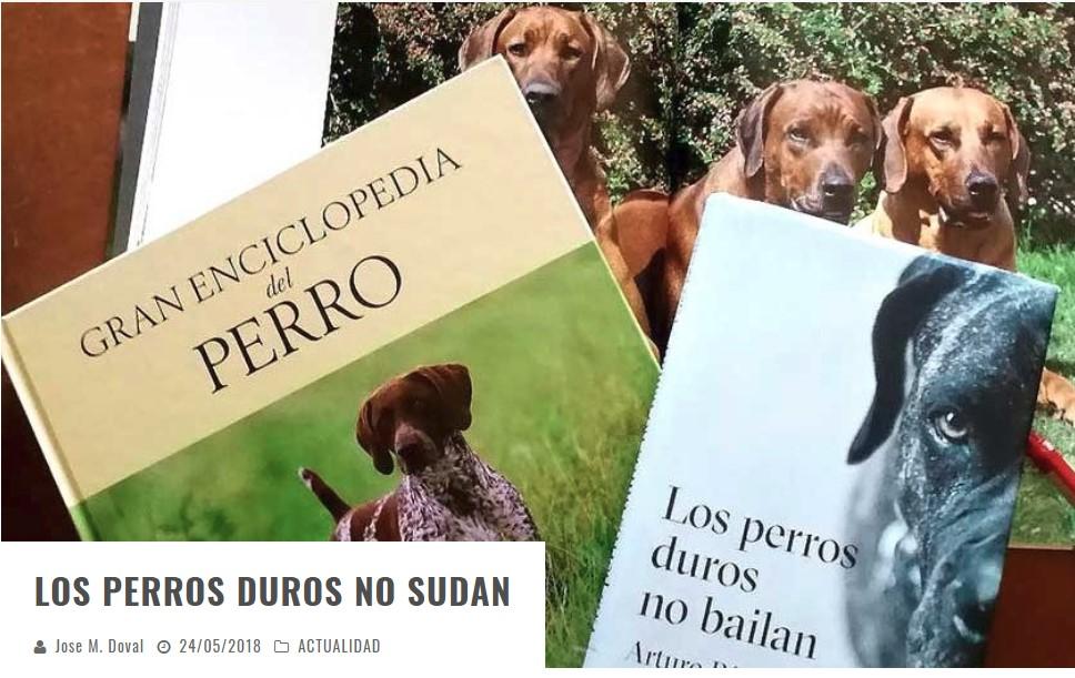 Los perros duros no sudan.