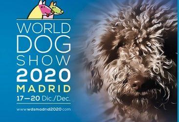 Cierre de inscripciones WDS 2020 Madrid 11 de noviembre