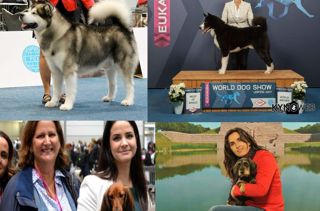 Alicantinos triunfando en el World Dog Show 2017