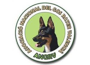 Socios-ANGRV