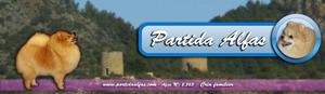 Socios-PartidaAlfas
