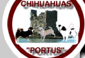 Socios-Portus
