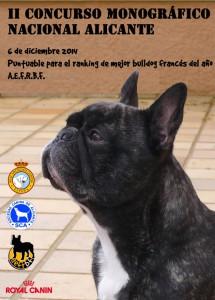 concurso Alicante