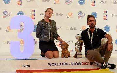 Alicantinos triunfando en la mundial WDS Brno 2021