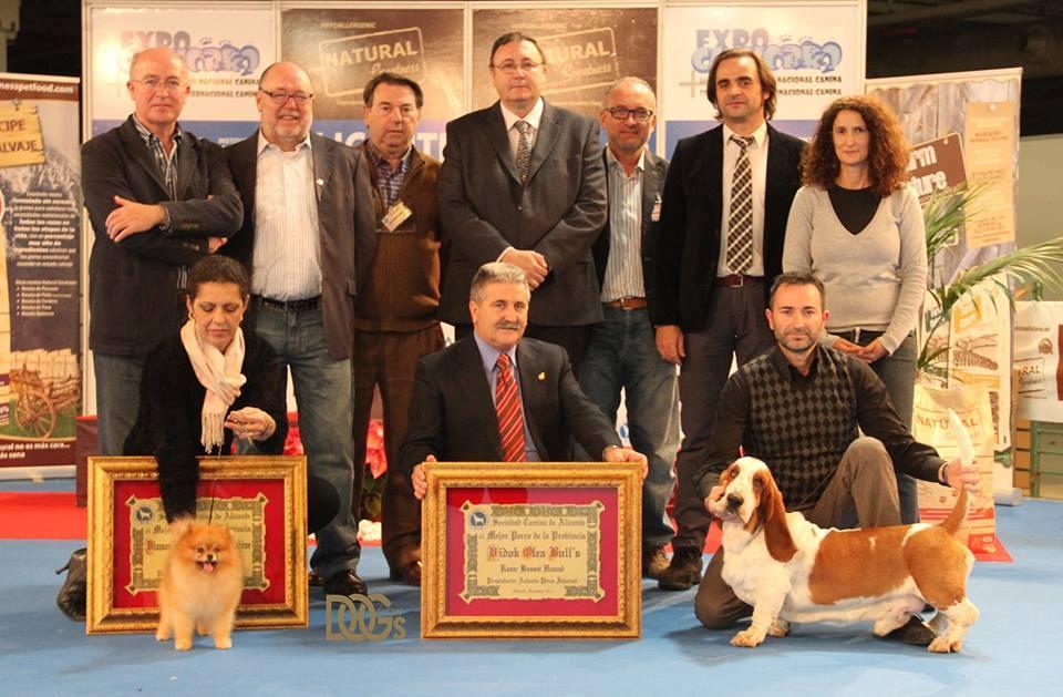 Calendario de concursos Campeonato Provincial y Exposiciones CAC y CACIB 2014
